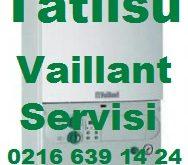 Tatlısu Vaillant Servisi